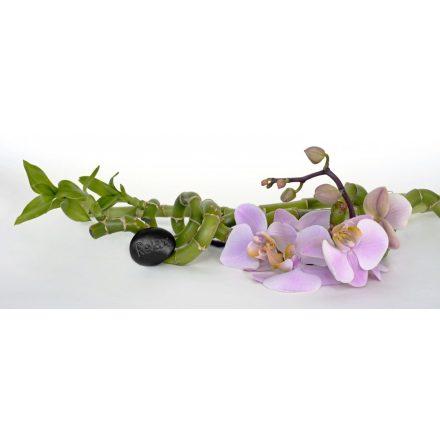Orchidea matrica konyhába