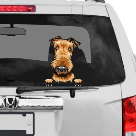 Airedale Terrier rajzos autómatrica