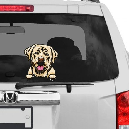 Labrador rajzos autómatrica