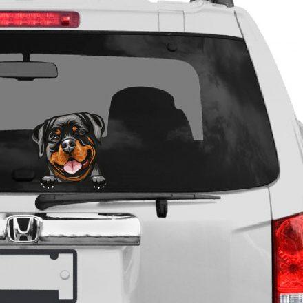 Rottweiler rajzos autómatrica