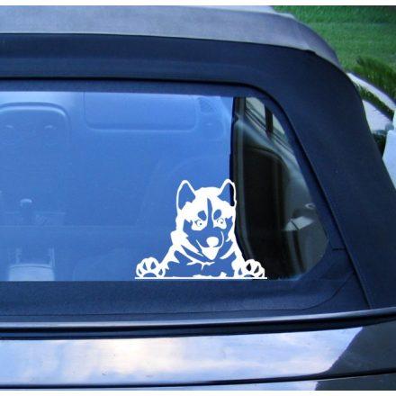 Husky autómatrica a Dekormatricák webáruház matricái közül