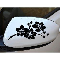 Orchidea autómatrica visszapillantóra