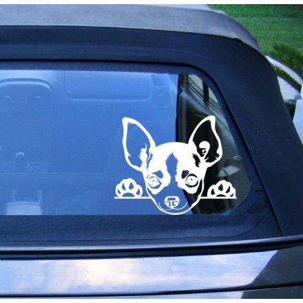 Chihuahua autómatrica a Dekoráció Webáruház termékei közül