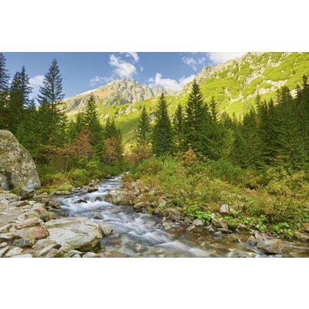 Roztoka patak a Tátra Nemzeti Parkban, poszter tapéta 375*250 cm