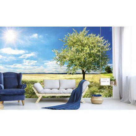Virágzó fa a tavaszi réten, poszter tapéta 375*250 cm