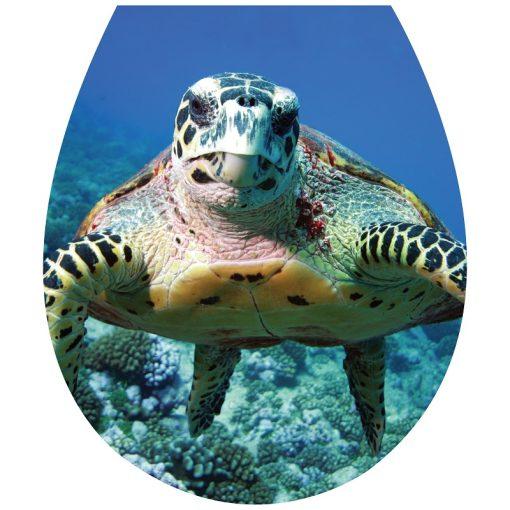 Kíváncsi teknős, toalett díszítő matrica - Dekoráció Webáruház