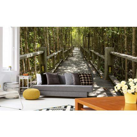 Út az erdőben, poszter tapéta 375*250 cm