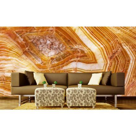 Közeli fa részlet, poszter tapéta 375*250 cm