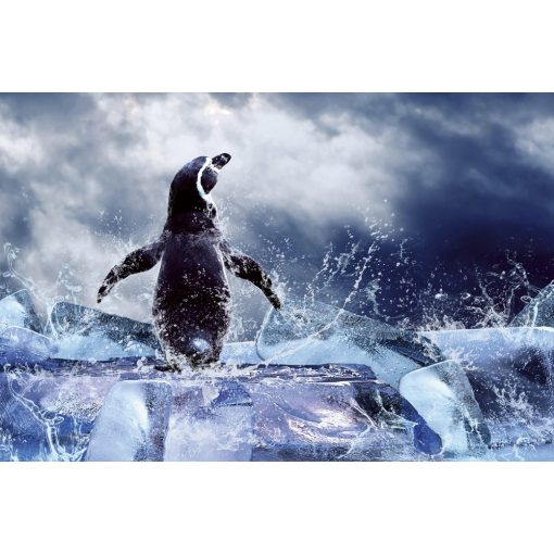 Pingvin a jégtömbön, poszter tapéta 375*250 cm