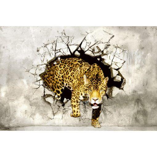 Falon áttörő tigris, poszter tapéta 375*250 cm