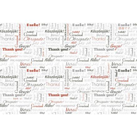 Köszönjük a világ nyelvein, poszter tapéta 375*250 cm