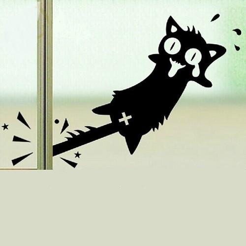 Pórul járt macska, ablakmatrica 26Sz x 12M cm
