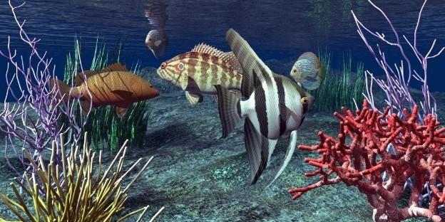 A tenger mélyén, akvárium matrica 60Sz x 30M cm