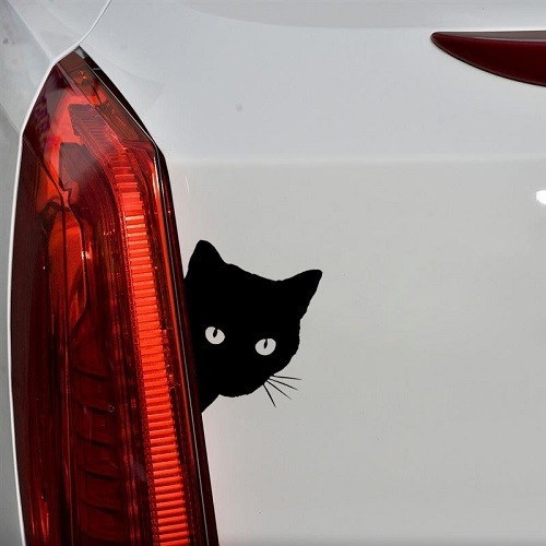 Kukucskáló cica autómatrica