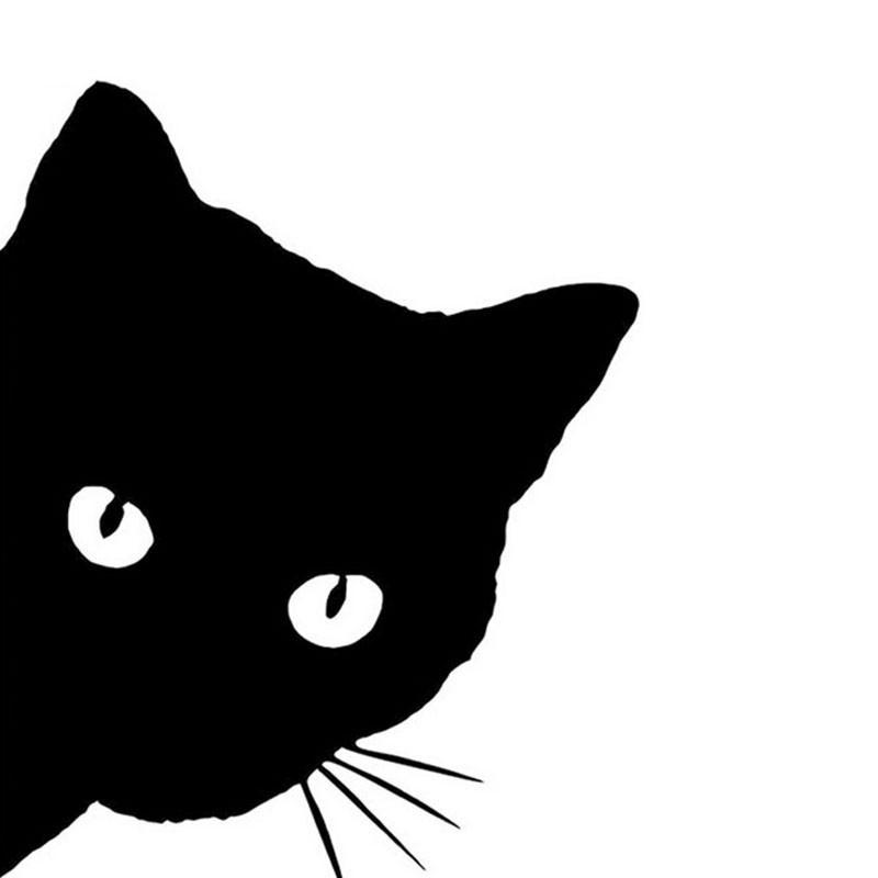 Cica, matrica mosógépre 16Sz x 20M cm